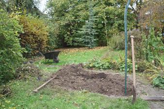 Le journal du jardin octobre 2008 quoi de neuf au potager - Quoi planter en novembre ...