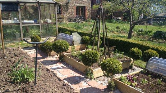 le buis au jardin autant de charme que de formes quoi de neuf au potager. Black Bedroom Furniture Sets. Home Design Ideas