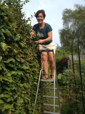 La cisaille haie une forme de slow gardening - Cisaille a haie ...