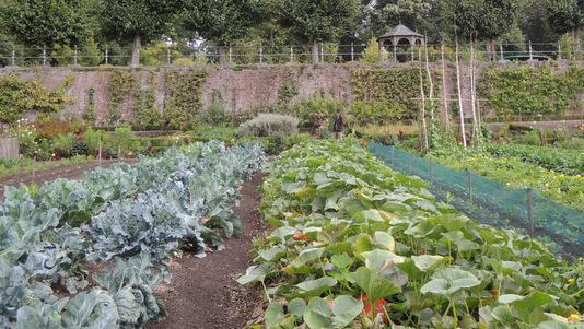 Jardins et v nements quoi de neuf au potager for Visiter les plus beaux jardins anglais