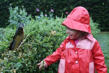 La promenade des nains de jardin quoi de neuf au potager - Petit nain de jardin toulouse ...