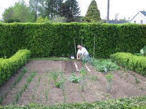 Semis et plantations quoi de neuf au potager - Quand cueillir les potimarrons ...