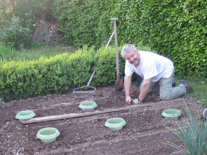 nicolas le jardinier quoi de neuf au potager. Black Bedroom Furniture Sets. Home Design Ideas