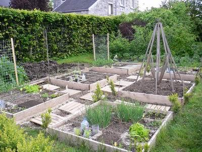 D co petit jardin potager carre 28 brest petit brest for Deco jardin potager