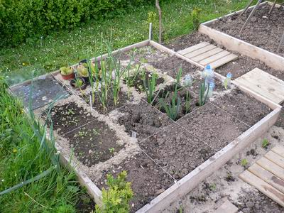 Potager en carr s t pictures to pin on pinterest for Potager en carre